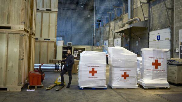 Aiuti umanitari della Croce Rossa - Sputnik Italia