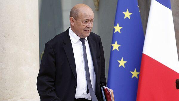 Jean-Yves Le Drian, ministro della Difesa francese - Sputnik Italia