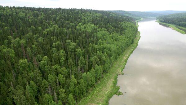 View of the Bolshoi Pit River - Sputnik Italia