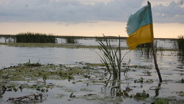 Una palude in Ucraina - Sputnik Italia
