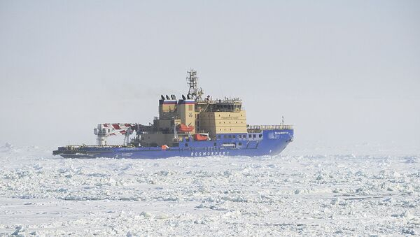 Rompighiaccio Vladivostok - Sputnik Italia