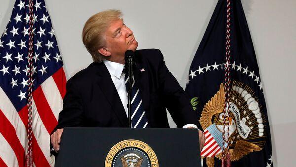 Presidente degli USA Donald Trump - Sputnik Italia