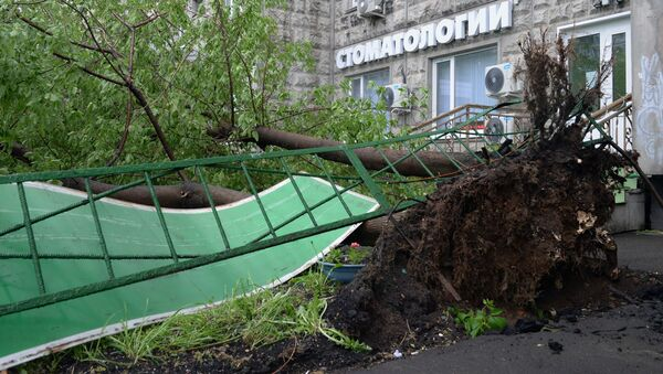 Le conseguenze dell'uragano a Mosca. - Sputnik Italia