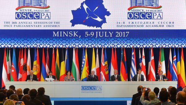 OSCE Parliamentary Assembly session - Sputnik Italia
