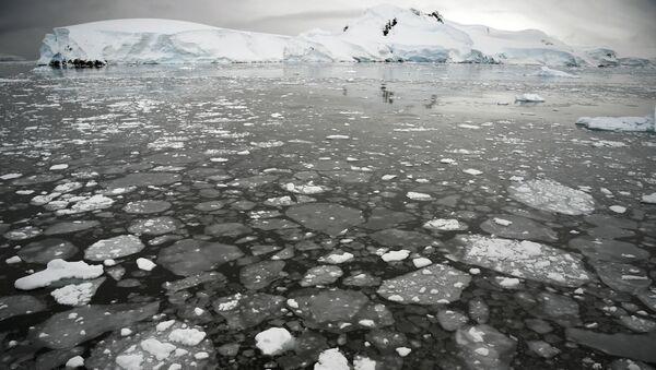 L'Antartide - Sputnik Italia