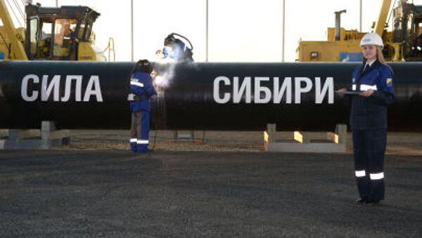 Gasdotto Power of Siberia - Sputnik Italia