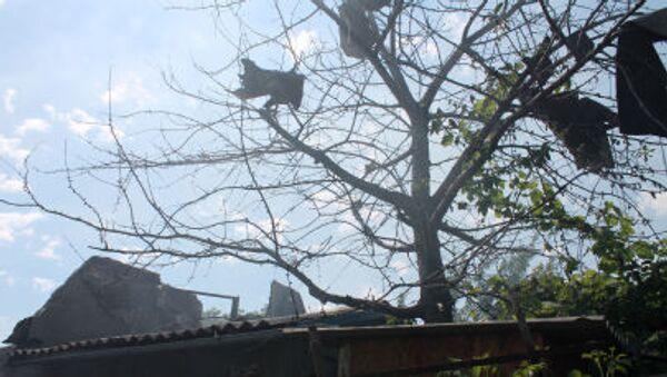 Donetsk, casa distrutta da bombardamenti nel quartiere Oktyabrsky - Sputnik Italia