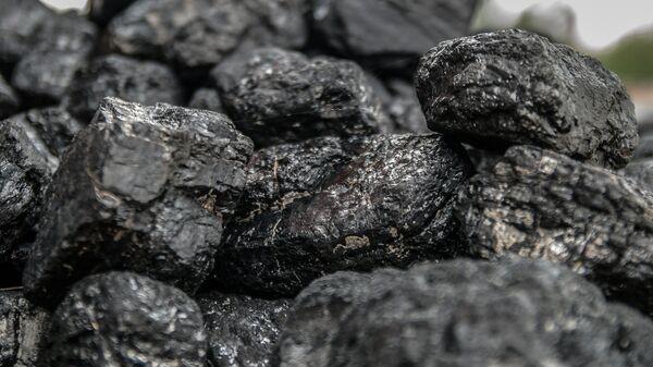 Coal - Sputnik Italia