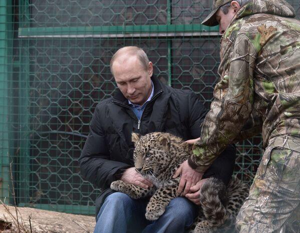 Vladimir Putin nel mondo degli animali. - Sputnik Italia