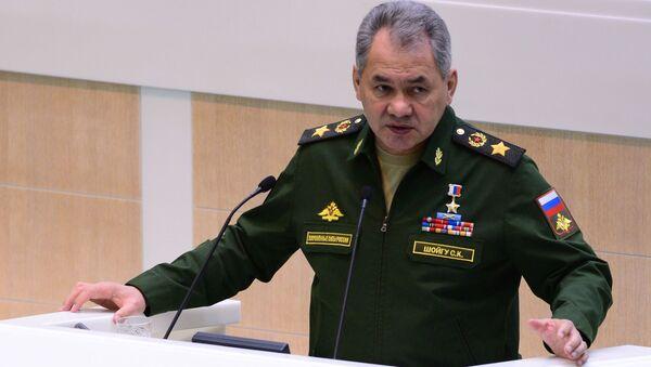 Министр обороны РФ Сергей Шойгу - Sputnik Italia