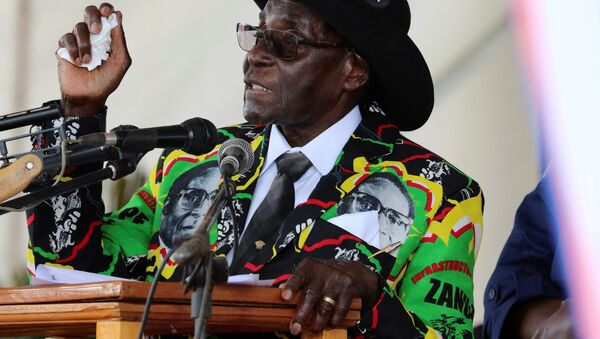 Il presidente del Zimbabwe - Sputnik Italia
