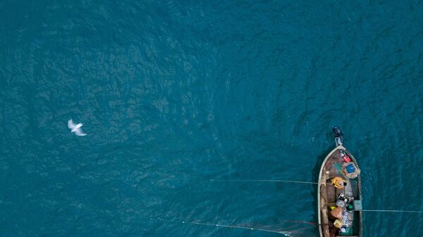 Mar Nero - Sputnik Italia