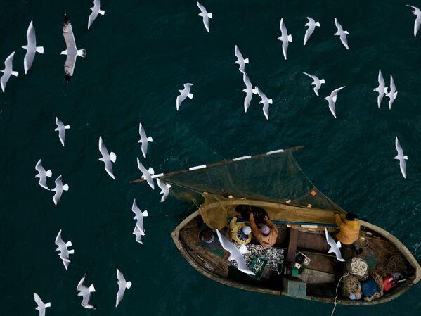 Pescatori visti durante la pesca nel Mar Nero a Sebastopoli. - Sputnik Italia