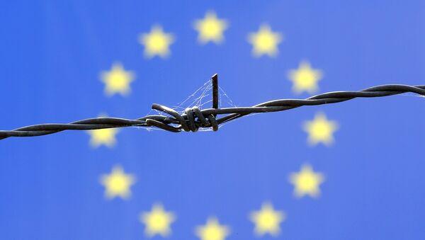 Una ragnatela sembra avvolgere questa bandiera UE - Sputnik Italia