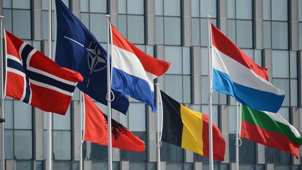 Bandiere NATO - Sputnik Italia