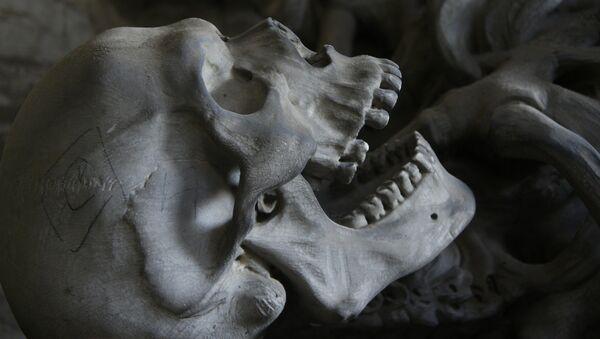Skull - Sputnik Italia