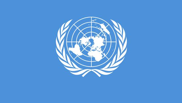Bandiera delle Nazioni Unite - Sputnik Italia