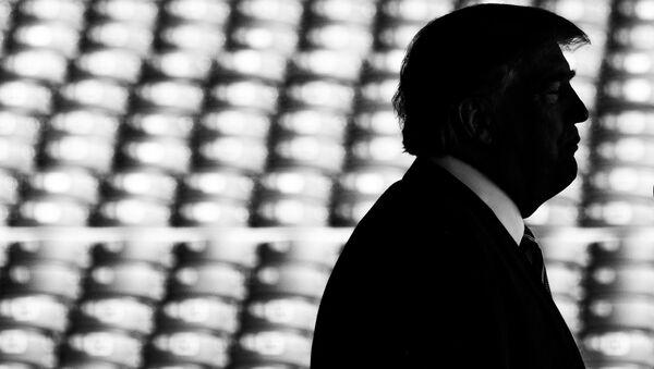 Il presidente statunitense Donal Trump - Sputnik Italia