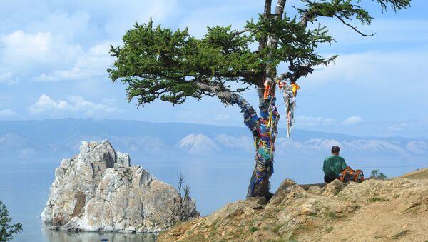 L'albero dei desideri sull'isola di Olkhon che si trova sul lago Bajkal - Sputnik Italia