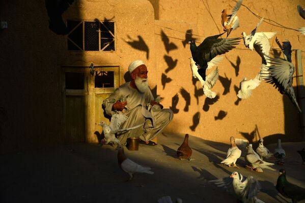 """I talebani hanno già chiarito che non ci sarà un governo di transizione, ma """"un passaggio completo"""" del potere; il movimento islamista è impegnato a mantenere l'ordine e la sicurezza nelle città sotto il loro controllo. - Sputnik Italia"""