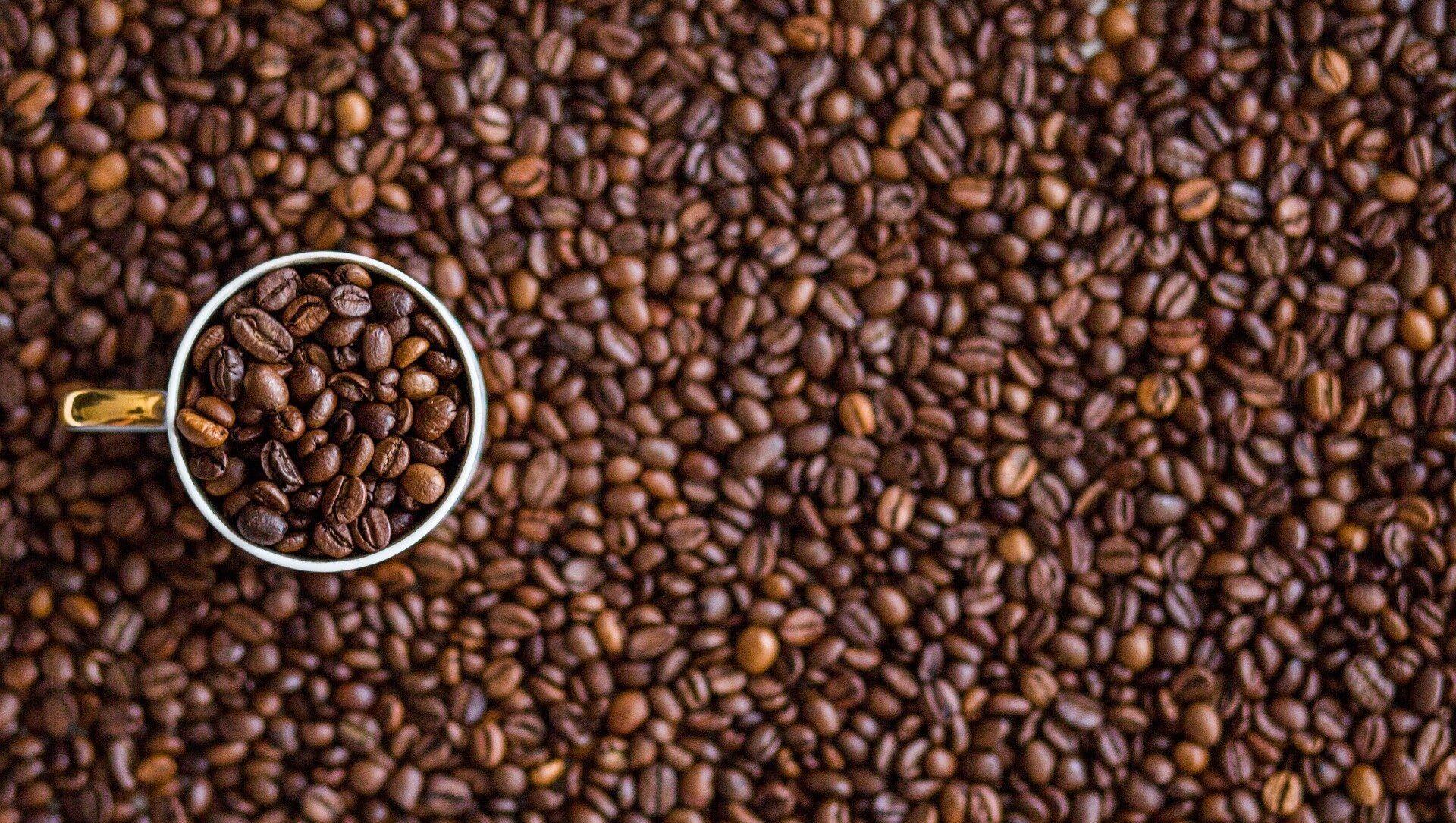 Caffè - Sputnik Italia, 1920, 22.04.2021