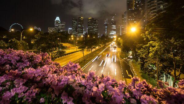 Veduta di una strada di Singapore - Sputnik Italia