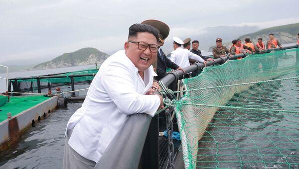 Kim Jong-un ha visitato la fabbrica di lavorazione delle saline - Sputnik Italia