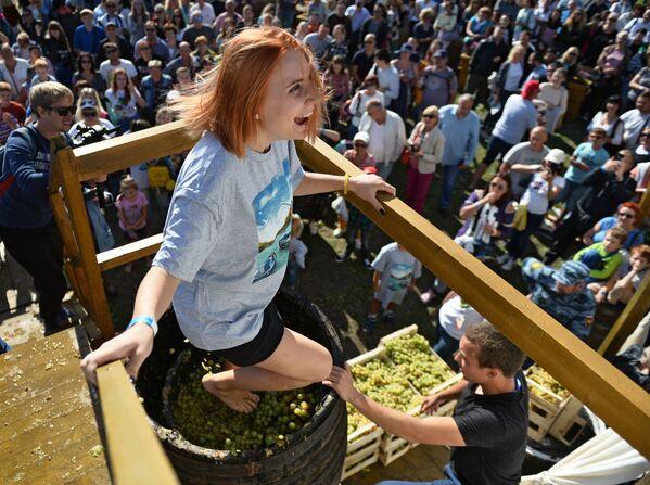 Il festival del vino Winefest a Balaklava, Ucraina. - Sputnik Italia