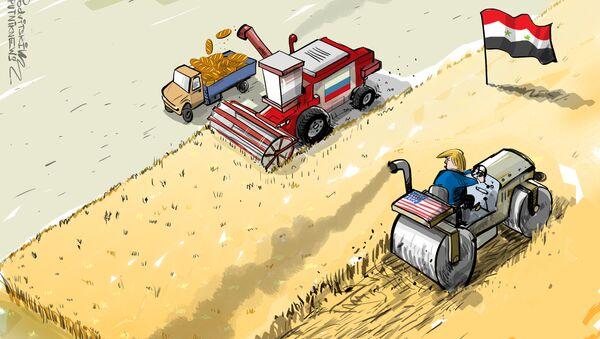 Siria diventerà il hub più grande del grano russo nel Medio Oriente - Sputnik Italia
