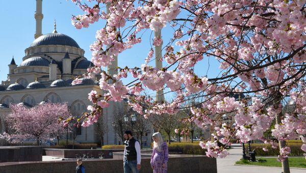 Giardini moschea Grozny - Cecenia - Sputnik Italia