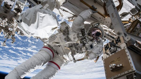 Astronauta Nasa - Sputnik Italia