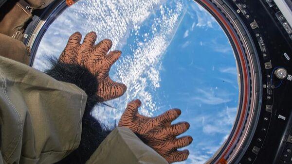 Vita nello spazio - Sputnik Italia