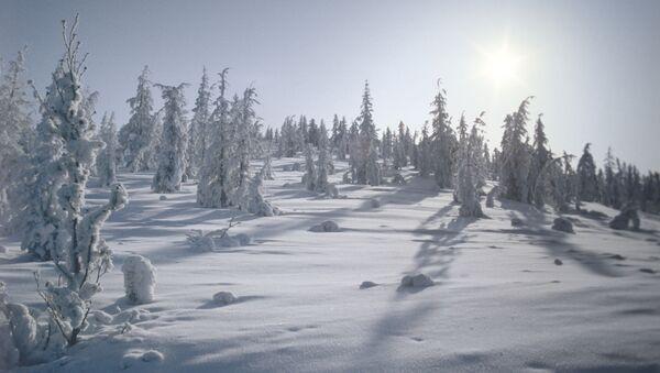 Зима в селе Оймякон, Якутия - Sputnik Italia