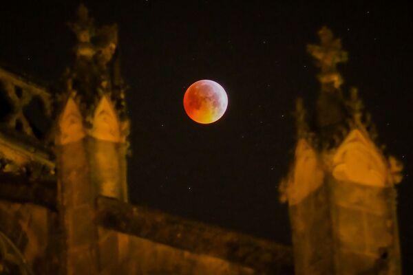 La Luna insanguinata vista in Francia. - Sputnik Italia