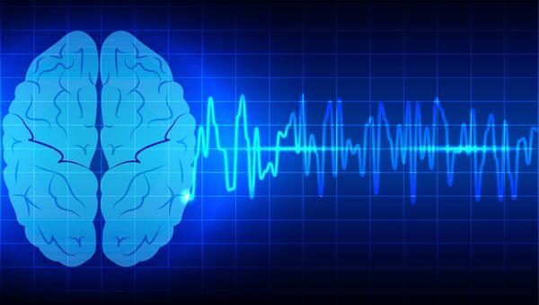 Modello di un cervello su uno schermo - Sputnik Italia
