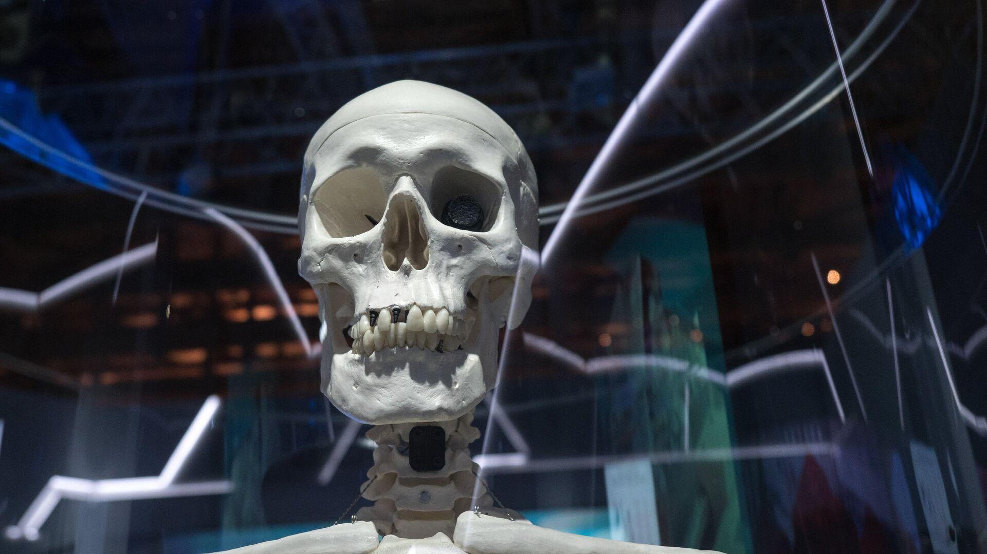 La rivoluzione della protesi? Le ossa create dalla stampante - Sputnik Italia, 1920, 29.05.2021
