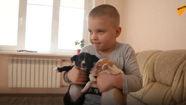 Vanya Shapranov, un ragazzo di 6 anni da Vladikavkaz, insieme a suo padre salva gli animali nei guai. - Sputnik Italia