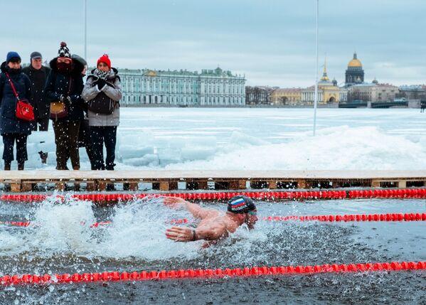 Un partecipante alla Coppa del Gran Neva del nuoto invernale a San Pietroburgo. - Sputnik Italia