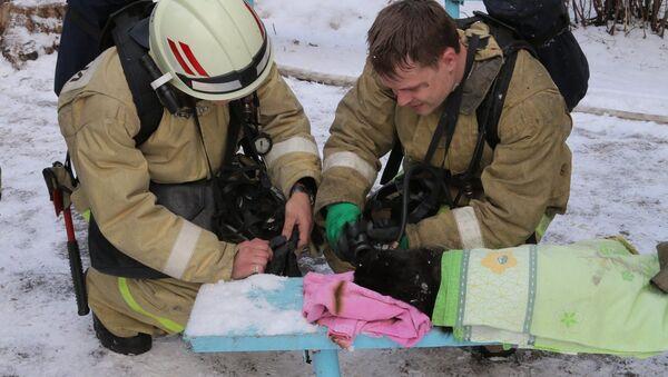 Dei soccorritori a Smolensk hanno rianimato un gatto da un incendio  - Sputnik Italia