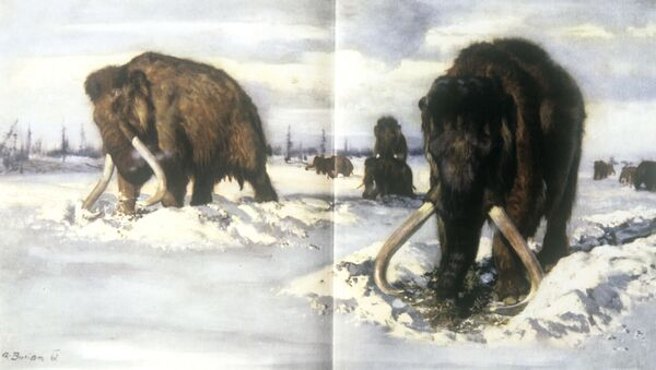Illustrazioni dal 'Libro dei mammut', edizione 'Artiya' disegno di Zdenek Burian - Sputnik Italia