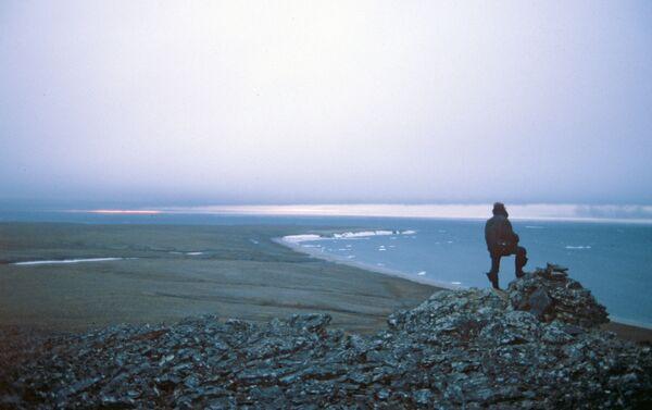 Riserva nazionale, sito UNESCO isola di Wrangel - Sputnik Italia