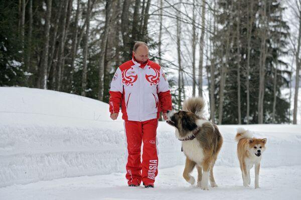 Il presidente russo Vladimir Putin con i suoi cani Buffy e Yume - Sputnik Italia