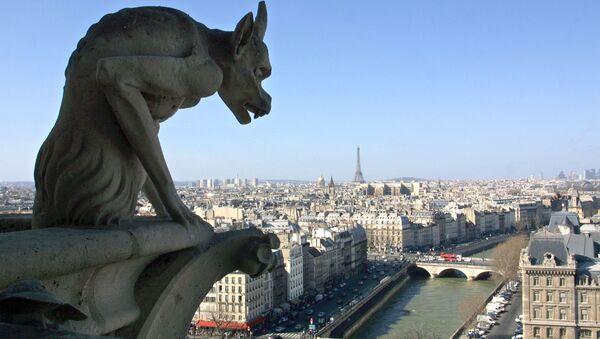 Вид на Париж с собора Парижской Богоматери  - Sputnik Italia