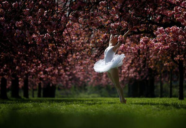 Una ballerina posa per una foto a Parigi, Francia. - Sputnik Italia