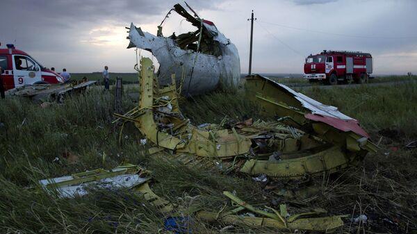 Il 17 luglio del 2014 il Boeing della Malaysian Airlines precipitò in Ucraina - Sputnik Italia
