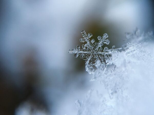 Fiocco di neve. - Sputnik Italia