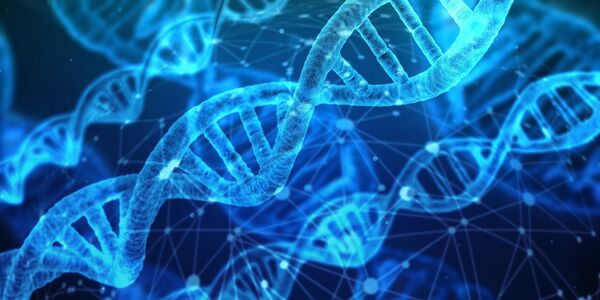 Immagini delle molecole del DNA. - Sputnik Italia
