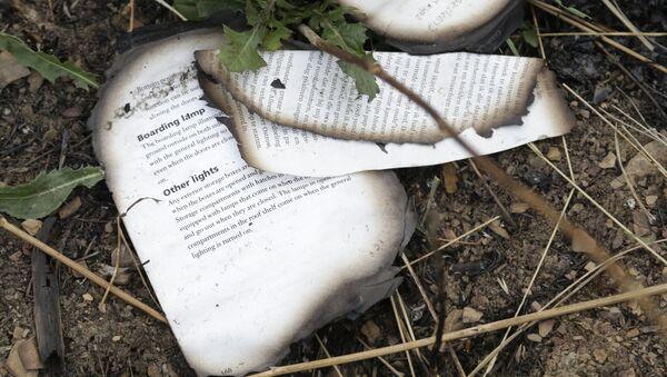Сгоревшая книга на месте крушения малайзийского Boeing на Украине - Sputnik Italia