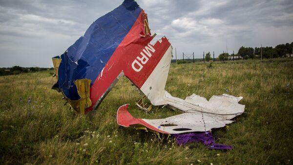 Rottami Boeing-777 in Ucraina orientale - Sputnik Italia