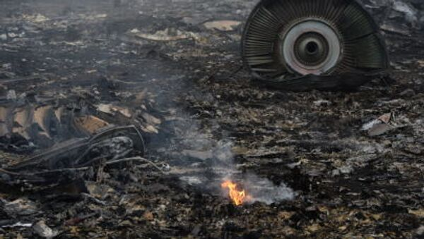 Rottami Boeing 777 della Malaysia Airlines, Ucraina - Sputnik Italia